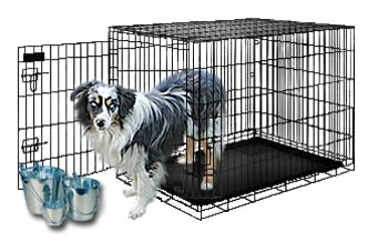 Mini Aussie puppies for Sale.  We'll C Mini Aussies prefers these wire crates for our household Mini Aussies.